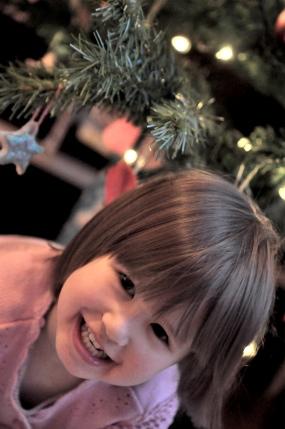 calla-tree.jpg