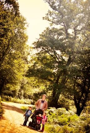 buggy-woods.jpg
