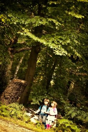 c-i-woods.jpg
