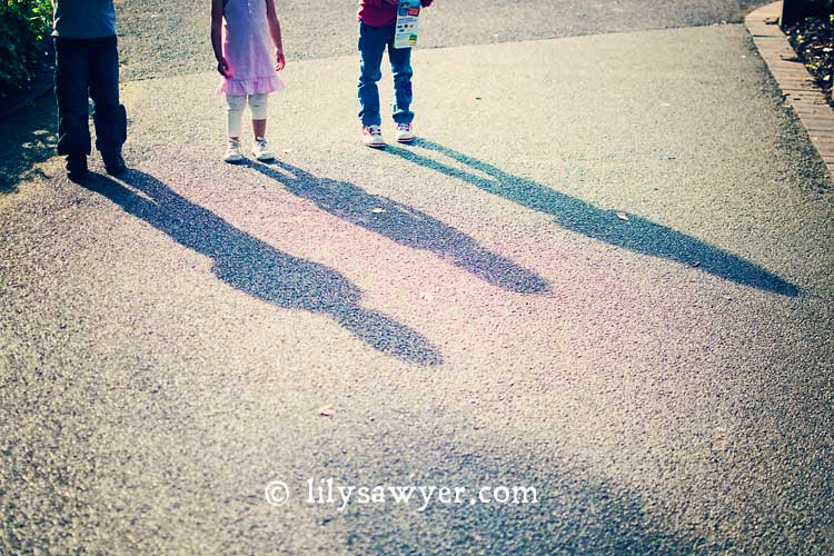 Creative shadows