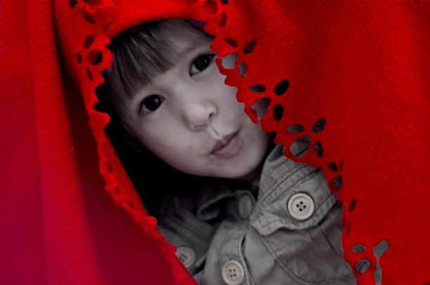 calla-red.jpg