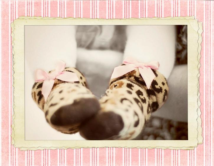 socks-web-frame.jpg