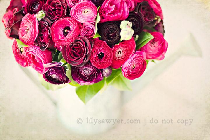 Bouquet new blog