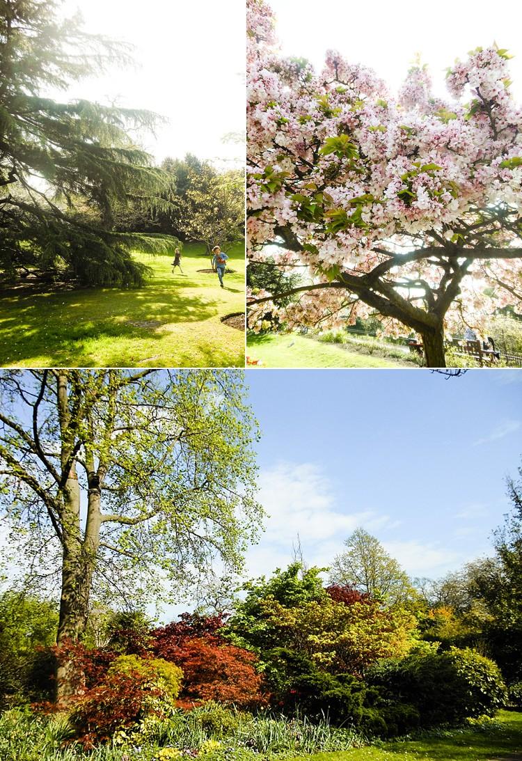 west ham park royal park spring day ornamental gardens london lily sawyer photo.jpg