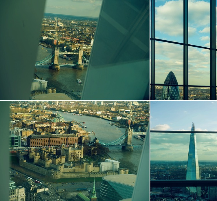 skygarden london 20 fenchurch street london photographer lily sawyer photo.jpg