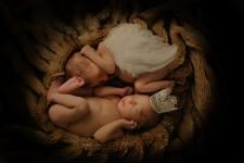 newborn-twins-photoshoot-greenwich
